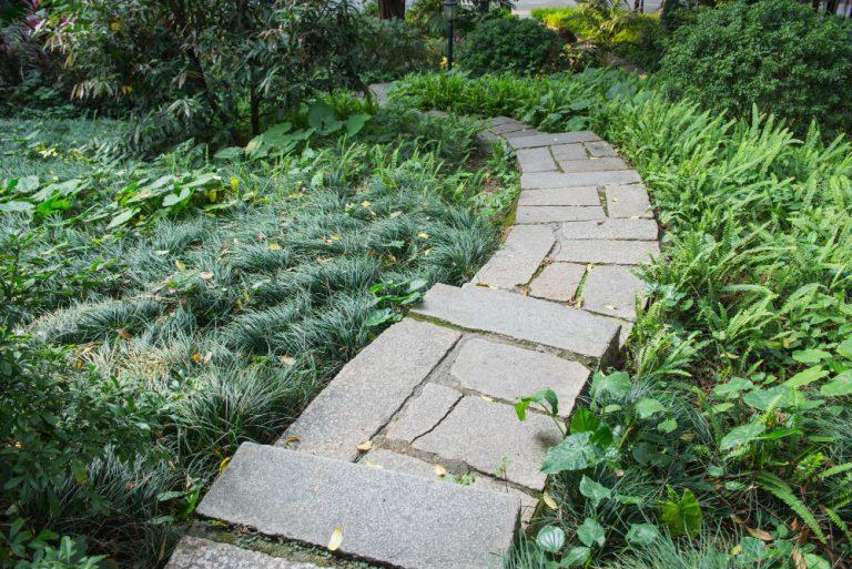 אבני מדרך לעיצוב שבילי גישה בגינה
